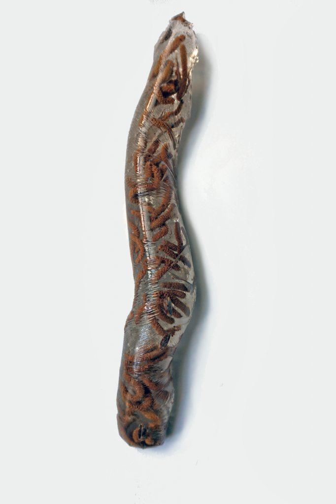 [:en]Anastasija Sosunova. Betula Pendula. 2017. 57x8x7 cm[:]